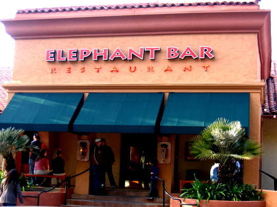 Elephant Bar Restaurant in Campbell, California